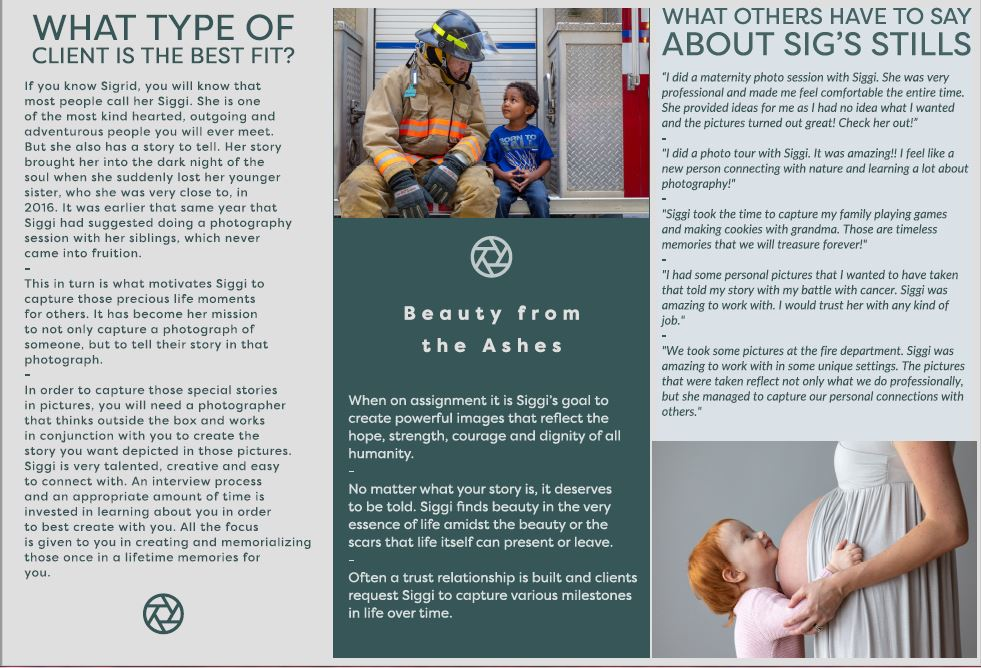 Siggi's Brochure 2